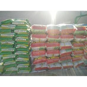 毛豆种子-3品种