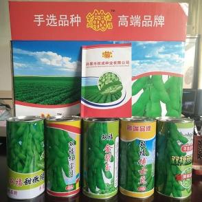 浙江毛豆种子-2品种